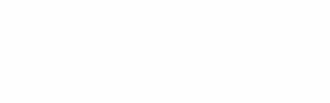 Freedom's Ark Logo